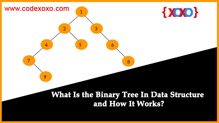What-Is-the-Binary-Tree-In-Data-Structure-and-How-It-Works